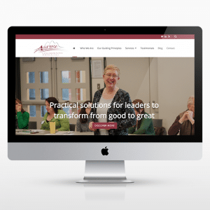 Executive-Coach-Website-Design-Aspire-Kalamazoo