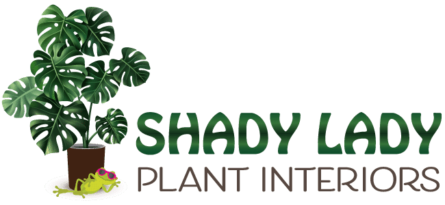 Shady Lady Plant Interiors