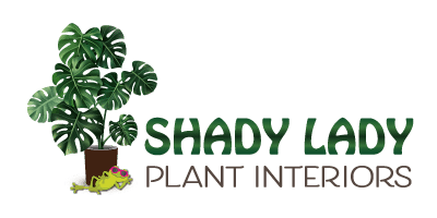 shady lady logo