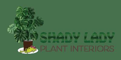 shady lady logo